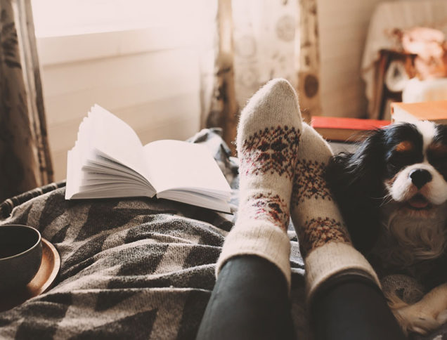 Sitting in bed with book, cozy socks and dog