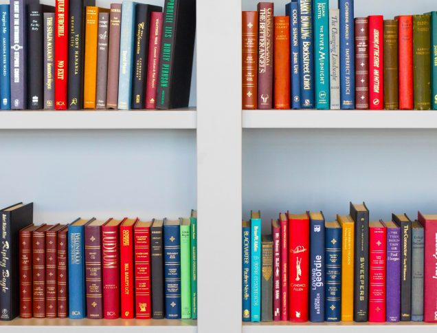 Bookcase with brightly-colored books