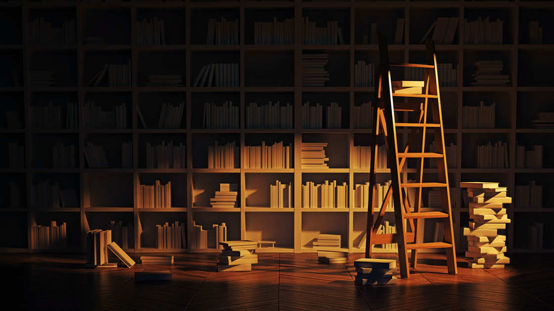 Bookshelves in the shadow