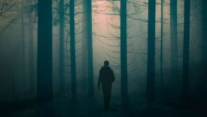 Person walking through spooky forest
