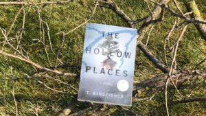 The Hollow Places set on a tree branch
